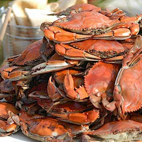 Maryland Jumbo CrabsGuaranteed FreshThe Crab Place