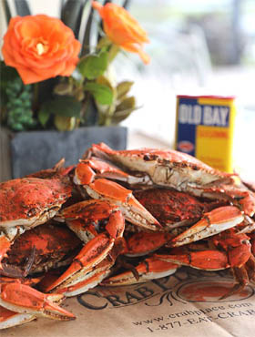 The Crab Place® - Official Site - Crab Season Is Here - Maryland's