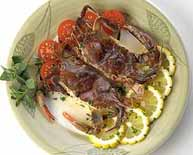 Maryland Soft Crabs